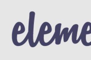 Elementor Wordpress Editor
